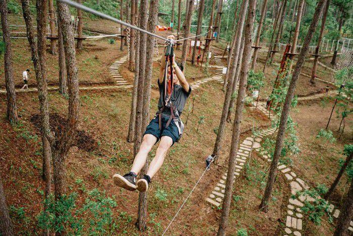 Datanla High Rope Course có vẻ đẹp của rừng thông.