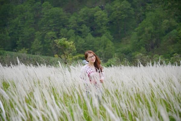 Cánh đồng cỏ lau đẹp ngút ngàn với màu trắng muốt.