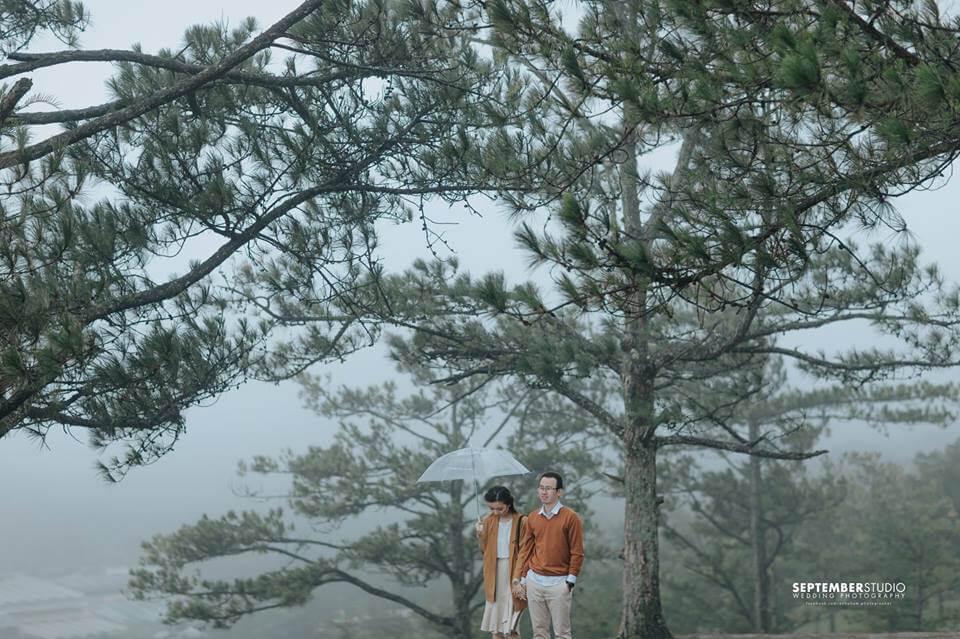 Đà Lạt sở hữu những đồi thông hoang sơ tuyệt đẹp.