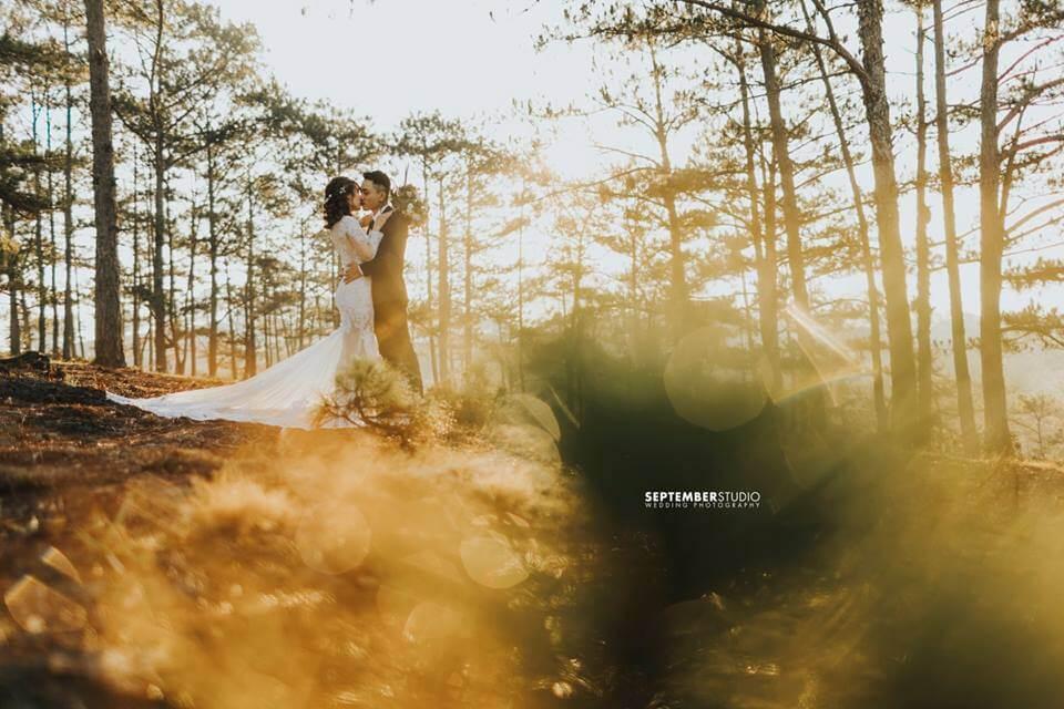 Bộ ảnh cưới chất Đà Lạt giá rẻ