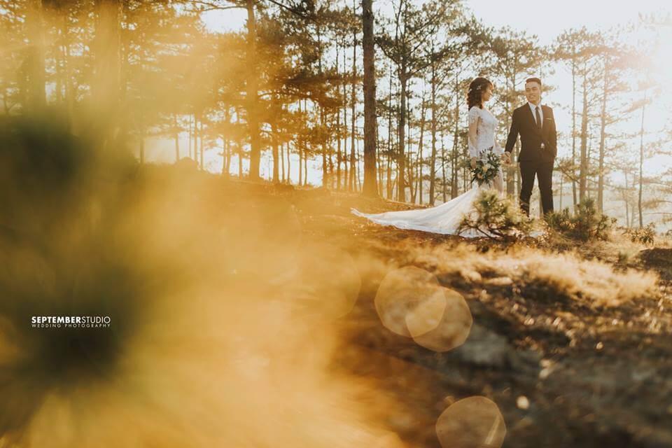Bộ hình cưới chất Đà Lạt