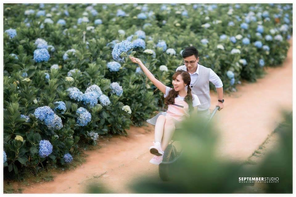 Bộ ảnh cưới đẹp Đà Lạt