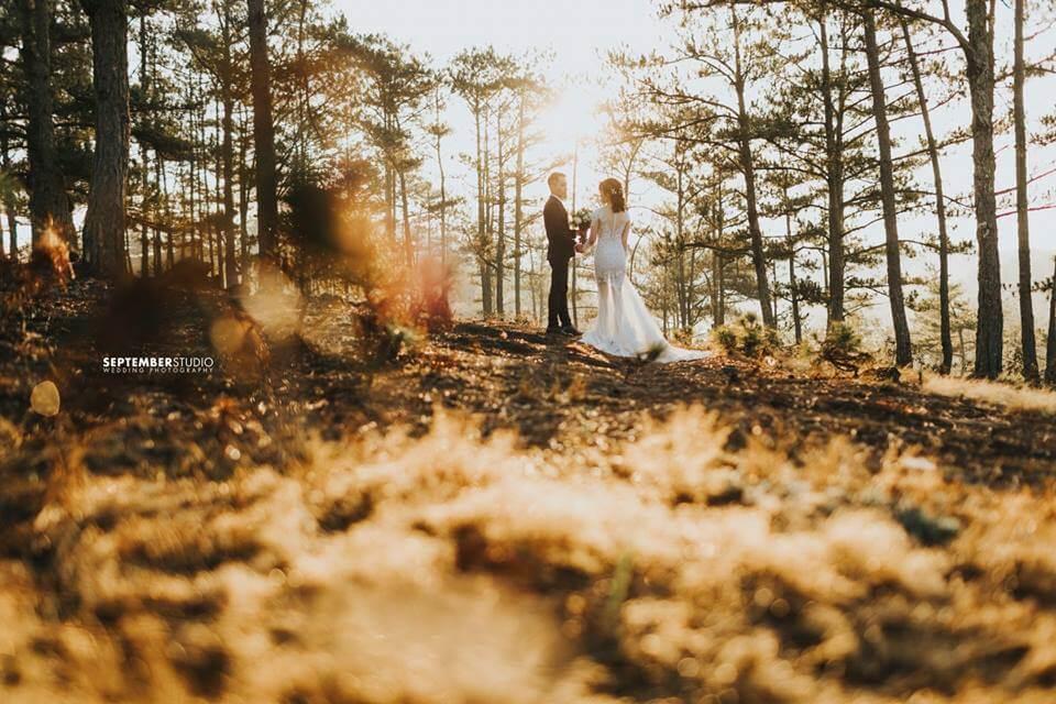 Bộ ảnh cưới đẹp ở tại Đà Lạt