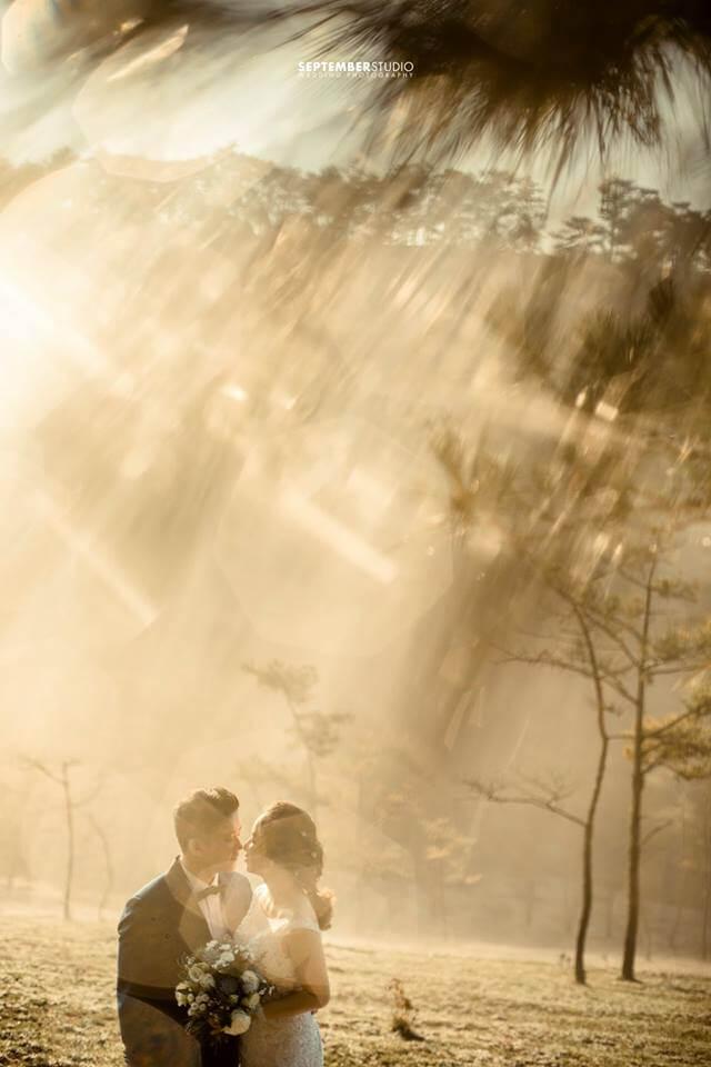 Top ảnh cưới Đà Lạt