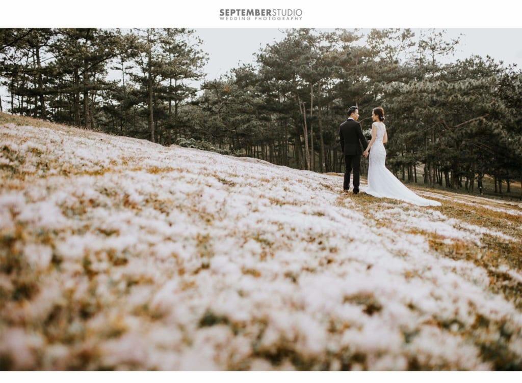 thủ tục đăng ký kết hôn cần những gì