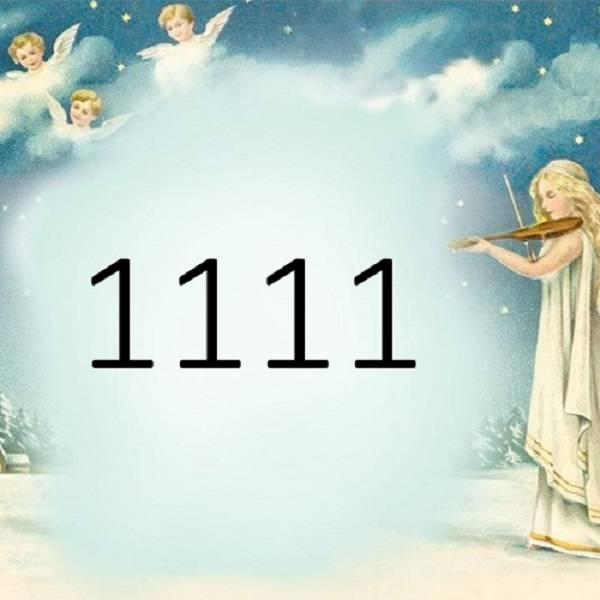 Ngày 11 tháng 11 là cung gì